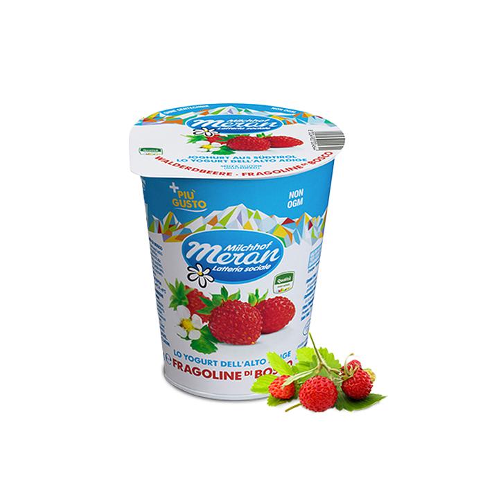 Yogurt Fragoline di Bosco / Joghurt mit Walderdbeeren 400 g MERAN