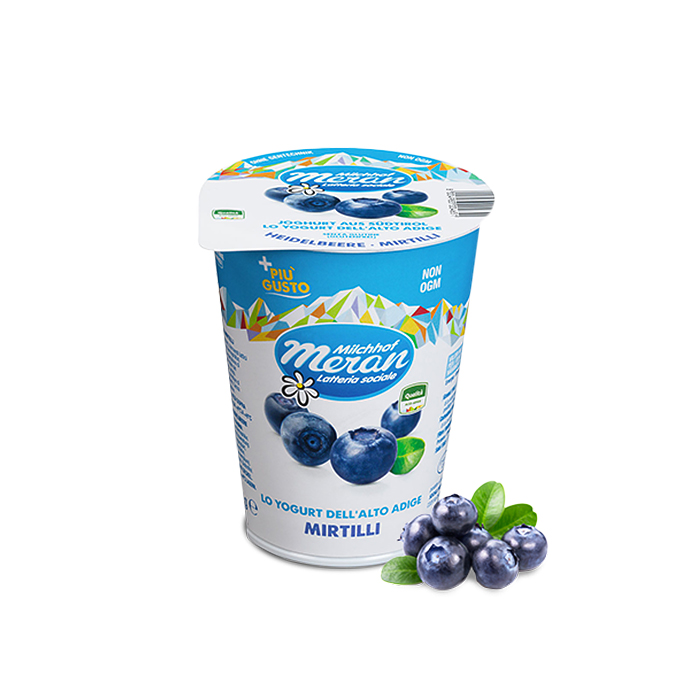 Yogurt Mirtilli / Joghurt mit Heidelbeeren 400 g MERAN