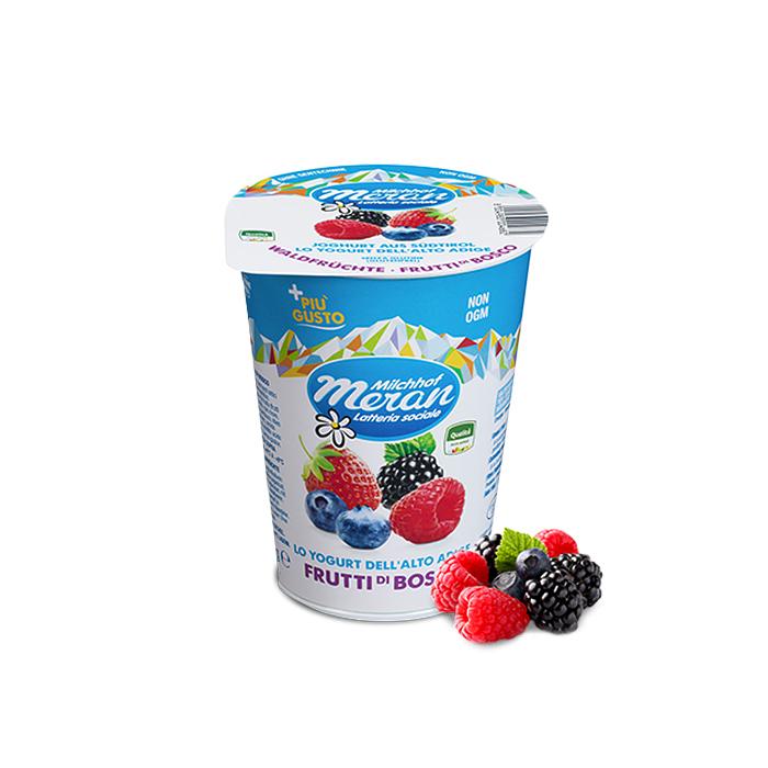 Yogurt Frutti di Bosco / Joghurt mit Walfrüchten 400 g MERAN