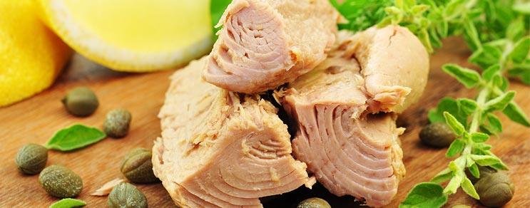 Fisch- und Fleischkonserven